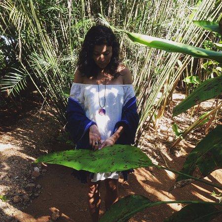 Casa Hamaca Guesthouse : Lush garden at Casa Hamaca