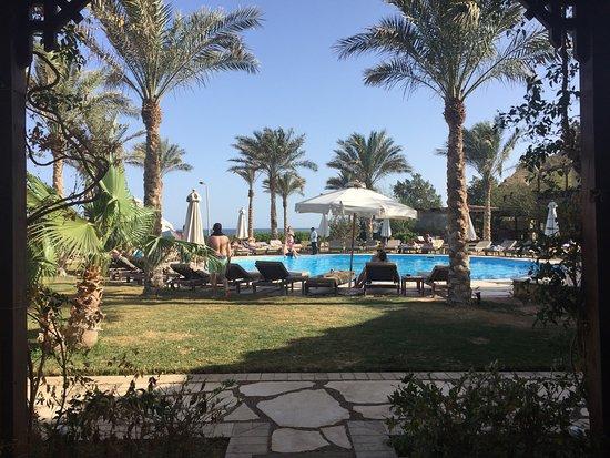 Dahab Paradise: photo0.jpg