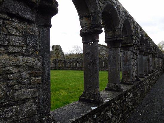 Thomastown, Irlanda: carvings