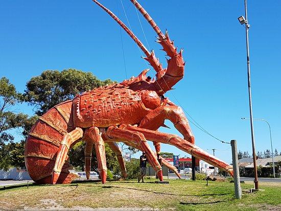 Kingston SE, Australië: 20170319_151703_large.jpg