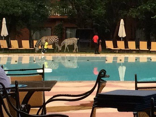AVANI Victoria Falls Resort Εικόνα