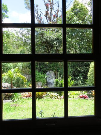 Il Pianista: The closed widow view, in case it ever gets chilly!