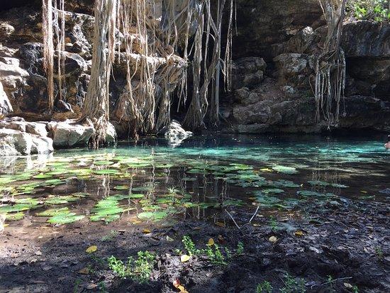 Cenote X Batun: Eh oui le paradis sur terre existe mais je ne vosu dirais pas ou il est :-)