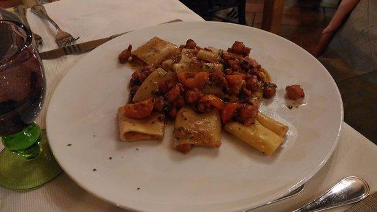 Montescudaio, Italia: Paccheri al ragù di polpo.