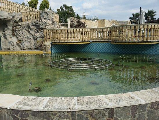 Bernalda, Italia: Facciata in notturna e piscine
