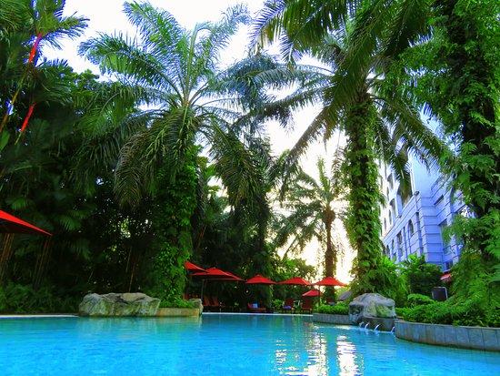 Sama-Sama Hotel KL International Airport: The pool at Sama-Sama Hotel.