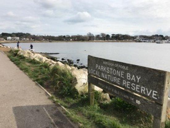 Poole Harbour: Poole