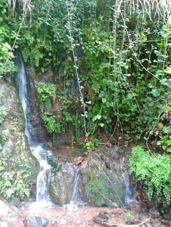 Galilee, Israel: מפל קטן