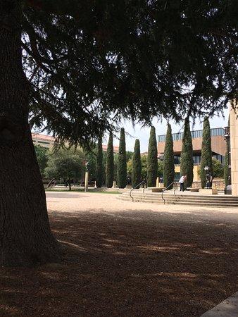 Palo Alto, CA: lovely garden