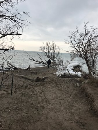 Point Pelee National Park 사진