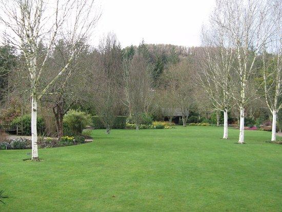 Great Torrington, UK: Winter colour in Lady Anne's garden