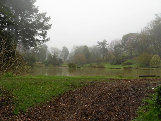 One of the three lakes at Marwood Hill Gardens.