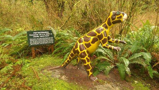 Prehistoric Gardens: IMAG0641_large.jpg
