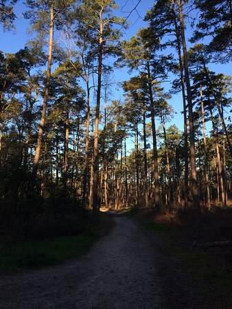 Hitchcock Woods: photo2.jpg
