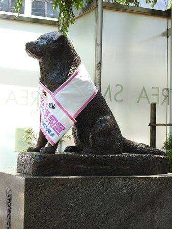 Photo of Monument / Landmark Hachiko at 道玄坂 1丁目, Shibuya 150-0043, Japan