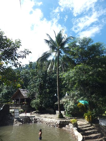 Abuyog, Filipina: garden