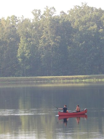 Louisa, VA: 25 Acre spring fed and stocked lake, great for relaxation and recreation.