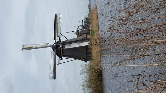 Boottocht Rotterdam - Kinderdijk: 20170317_134638_large.jpg