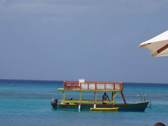 St James, Barbados: FB_IMG_1489956079334_large.jpg