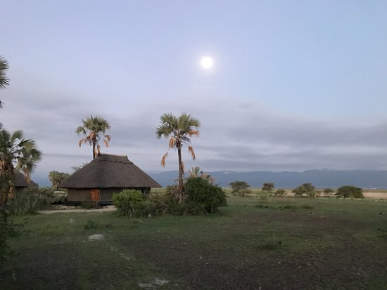 Maramboi Tented Camp: From our deck pre-sunrise