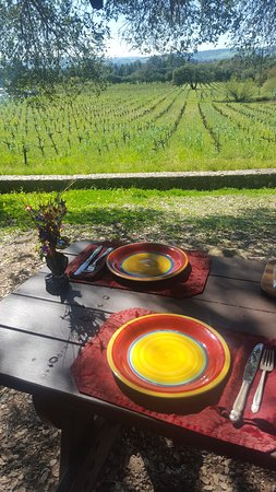 Healdsburg, CA: Lunch spot at Bartholomew Park Winery; on the Sonoma tour