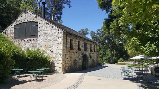 Χίλντσμπεργκ, Καλιφόρνια: Buena Vista Winery, one of our favorite winery partners on the Sonoma tour