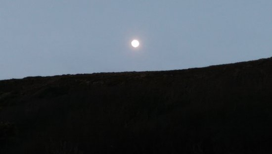 St Agnes, UK: IMAG1807_large.jpg