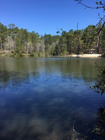 Chipley, FL: Falling Waters State Park