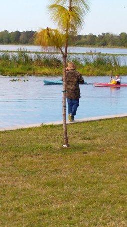 Jiggs Landing : Fishing