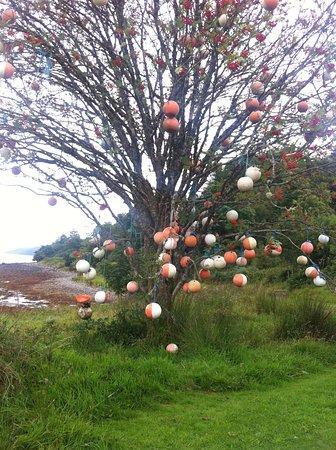 Tarbert, UK: Barmore Island