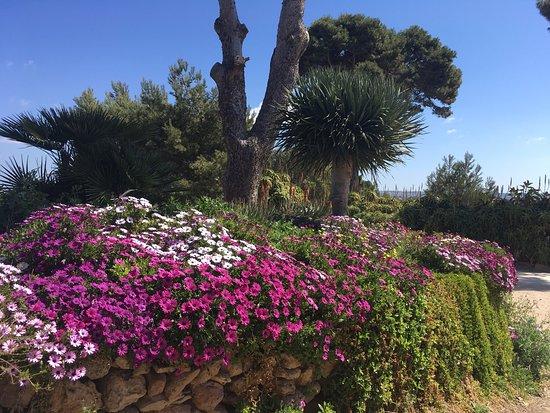Isola di Mozia (Mothia)/ San Pantaleo : photo2.jpg