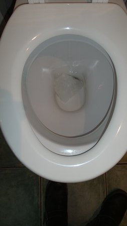 The Nelson : Loo seat did not fit/ not nice for man sitting!