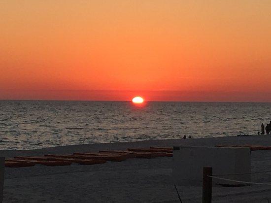 Emerald Isle  Panama City Beach Rental Availability
