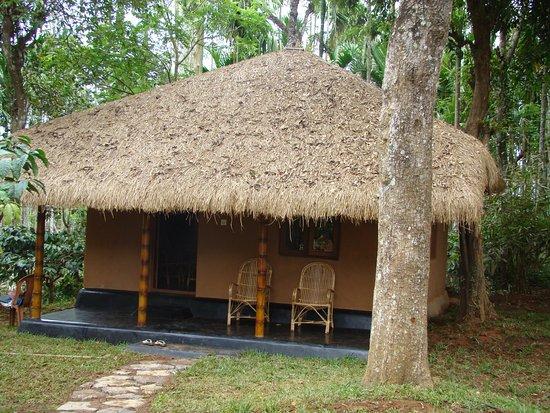 Kenichira, India: MUD HOUSE
