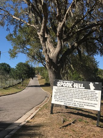 Spook Hill : Fun and free. Only got a second or two of the illusion