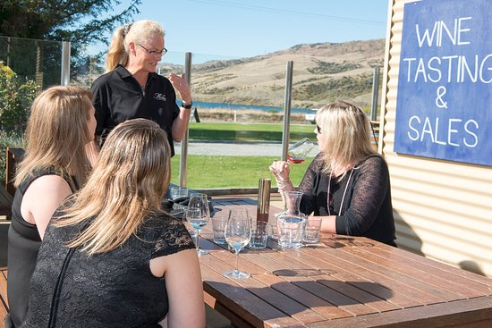 Cromwell, New Zealand: Outside the Tasting Room on a beautiful day