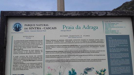 Sintra Municipality, Portugal: 20170319_135609_large.jpg