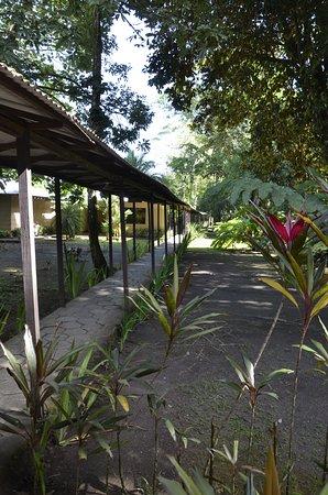Manatus Hotel: Manatus Lodge Covered Walkway
