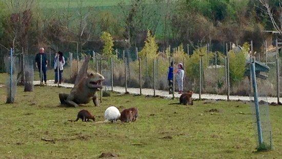 Viry, France: Dinosaures et vrais animaux à Tropicaland