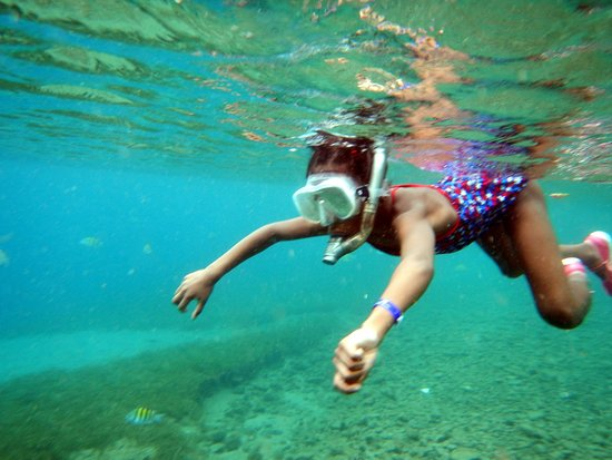Vieux Fort, St. Lucia: Snorkeling
