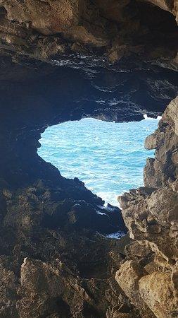 Saint Lucy Parish, Barbados: Inside the animal flower cave