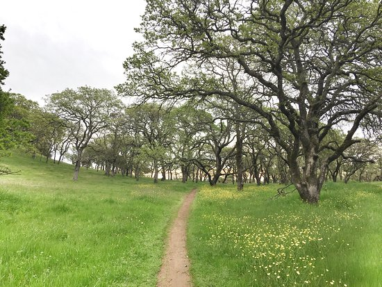 Rockville Hills Regional Park: photo4.jpg