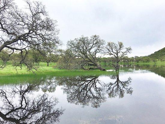 Rockville Hills Regional Park: photo6.jpg