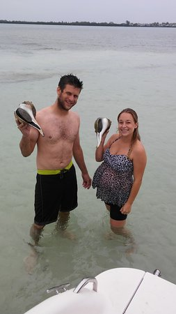 Bradenton Beach, FL: Huge Conk Shells!