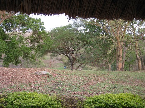 Murchison Falls National Park, Uganda: View from our Cottage