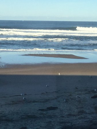 Sandcastle Beachfront Motel: photo0.jpg