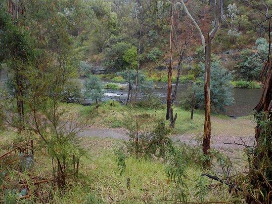Warrandyte, Australia: The river from higher level