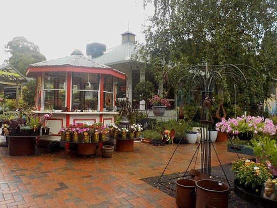 Doncaster East, Australia: Tearooms behind gazebo