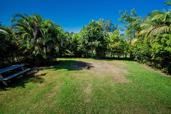 Wooli, Australia: Large Grassy Powered Sites