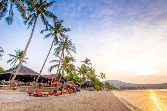 Secret Garden Beach Resort: Beach